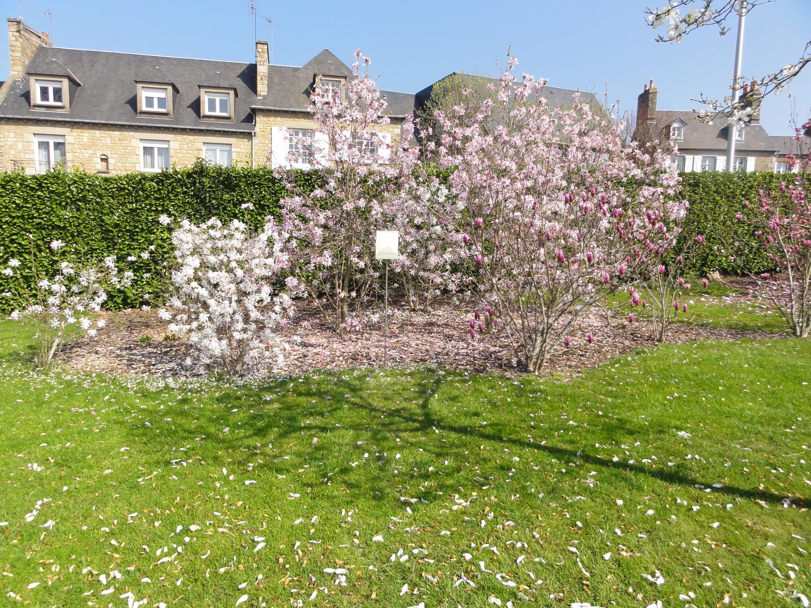 jardin des plantes avranches normandie rentals
